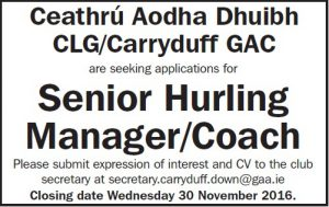 hurling-manager-ad-nov-2016