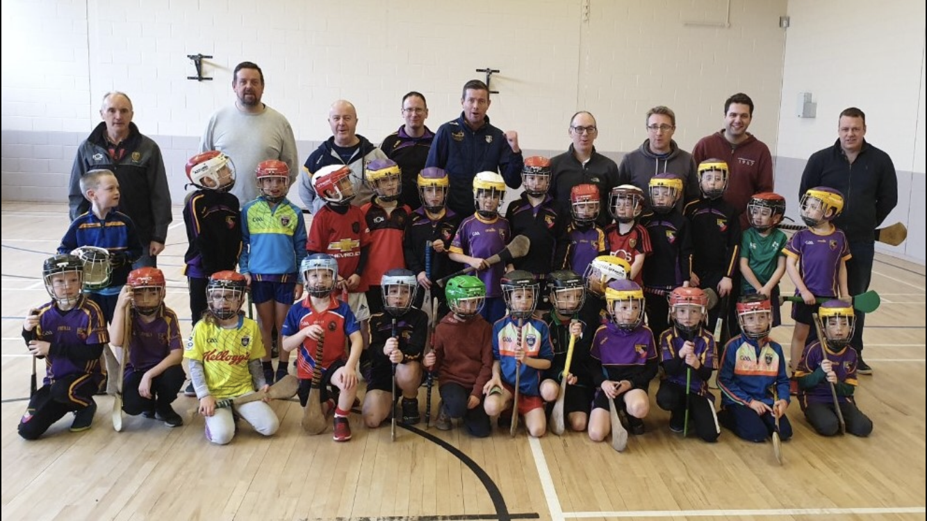 Coach-the-Coaches hurling session