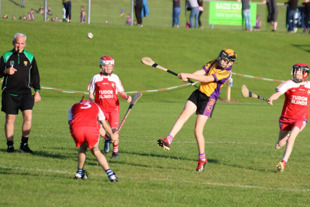 Join our Hurling Coaching Team
