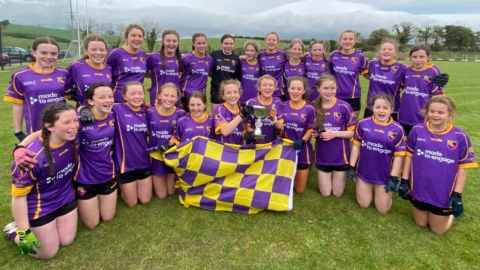 U13's Win Down LGFA A Championship